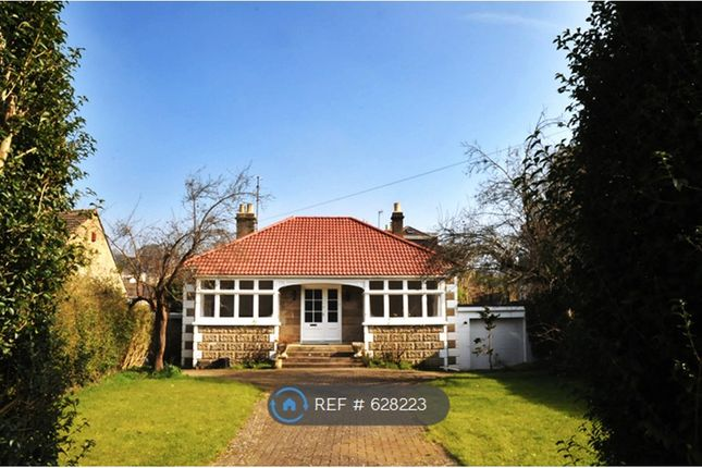 Thumbnail Bungalow to rent in Westfield Park South, Bath