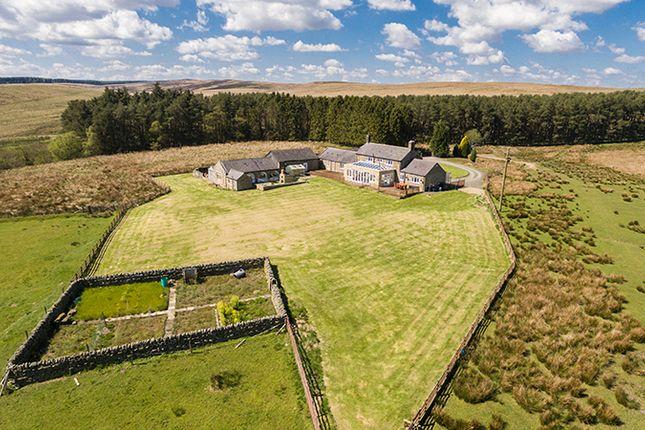 Thumbnail Farmhouse for sale in West High Ridge, Wark, Hexham, Northumberland