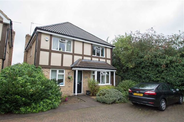 Thumbnail Detached house for sale in Ware Road, Hailey, Hertford