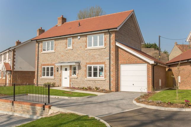 Thumbnail Detached house for sale in Ash Green, Bourton, Gillingham