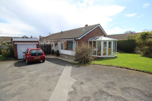 Thumbnail Detached house for sale in Thornhill, Bangor