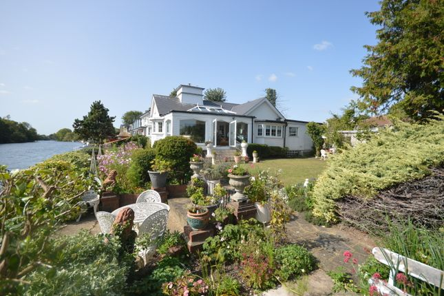 Thumbnail Detached bungalow for sale in Sunbury Court Island, Sunbury On Thames, Middlesex