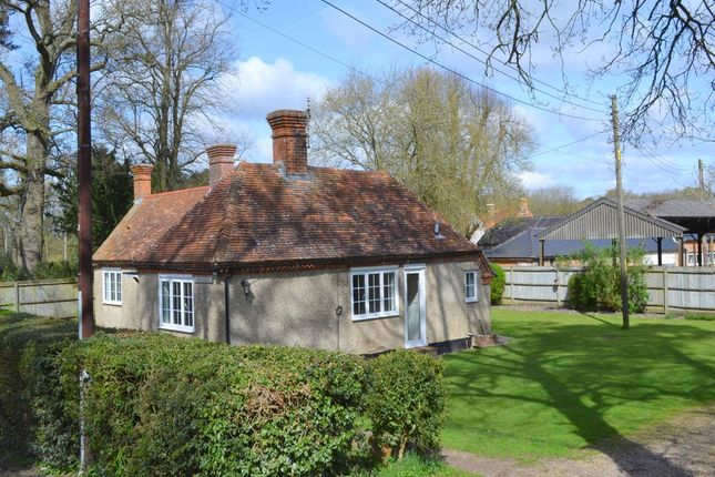 Thumbnail Bungalow to rent in Westridge, Highclere, Berkshire