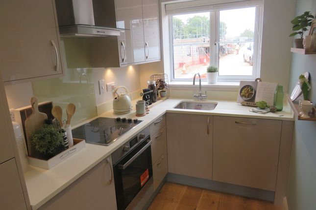Thumbnail Detached house for sale in Feniton Park, Feniton, Honiton