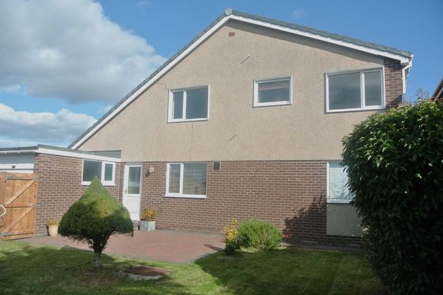 Thumbnail Property to rent in Bracken Ridge, Lancaster Park, Morpeth