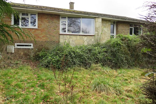 Thumbnail Detached bungalow for sale in Carisbrooke Court, Romsey