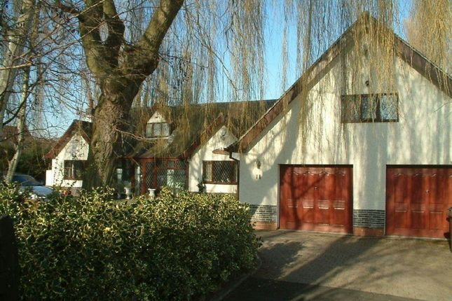 Thumbnail Bungalow to rent in Springfield Avenue, Sandiacre, Nottingham