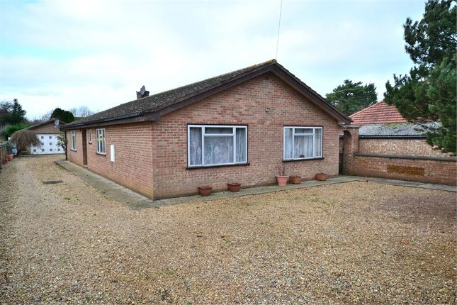 Thumbnail Detached bungalow for sale in Green Lane, South Wootton, King's Lynn