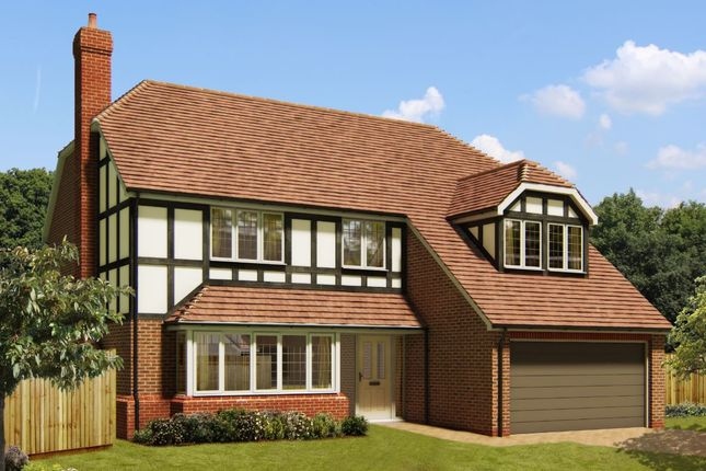 Thumbnail Detached house for sale in Cuckfield Road, Burgess Hill