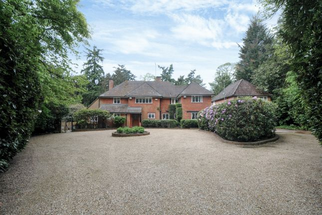 Thumbnail Detached house to rent in Virginia Water, Surrey