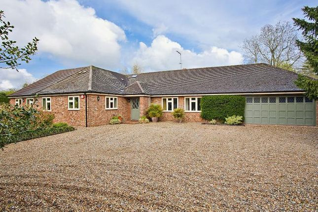 Thumbnail Detached bungalow for sale in Mackerye End, Harpenden, Hertfordshire
