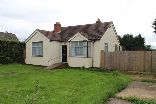 Thumbnail Bungalow for sale in Main Road, Chelmsford, Essex