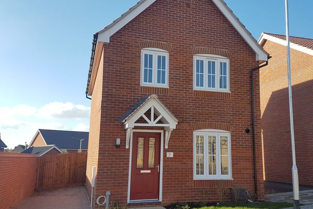 Thumbnail Detached house for sale in Shackeroo Road, Bury St. Edmunds