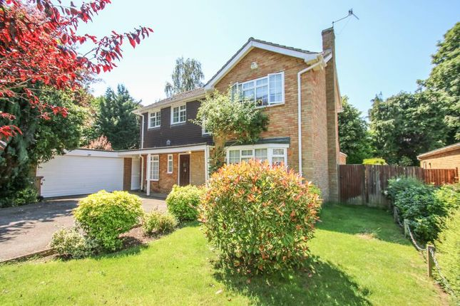 Thumbnail Detached house to rent in Guildcroft, Guildford