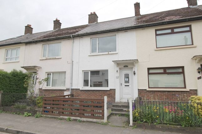 Thumbnail Terraced house to rent in Flora Street, Belfast