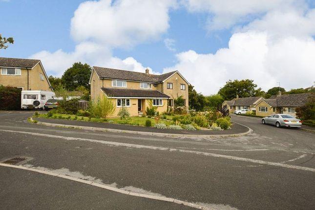 Thumbnail Semi-detached house for sale in Castleton, Haselbury Plucknett, Crewkerne