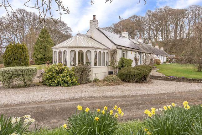 Thumbnail Bungalow for sale in 1 Fishponds Cottages, Stormontfield, Perth