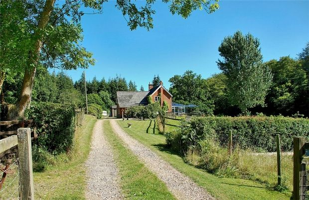 Thumbnail Cottage for sale in Minstead, Lyndhurst, Hampshire