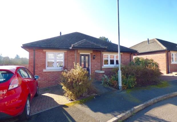 Thumbnail Detached bungalow for sale in Hawthorn Close, Gretna, Dumfries And Galloway