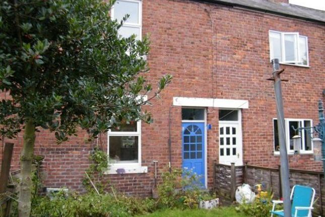 Thumbnail Terraced house to rent in Crawford Terrace, Morpeth