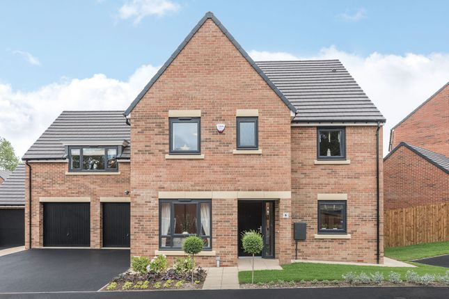 "Thumbnail Detached house for sale in ""The Hepscott"" at Loansdean, Morpeth"