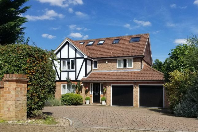 Thumbnail Detached house to rent in Spring Shaw Road, Orpington, Kent