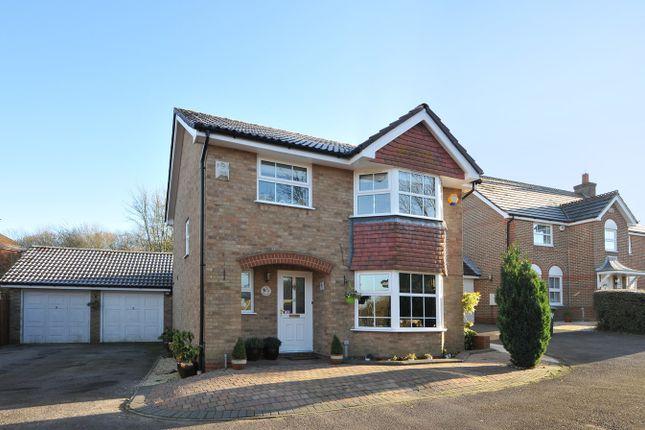 Thumbnail Detached house to rent in Octavian Close, Hatch Warren, Basingstoke