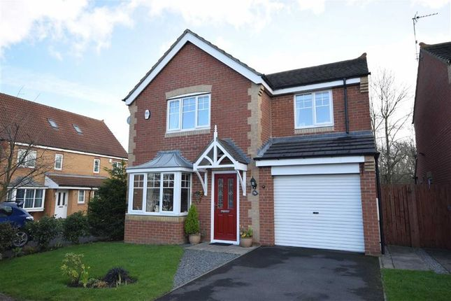 Thumbnail Detached house for sale in Strathmore Gardens, South Shields