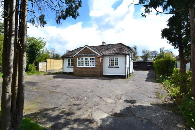 Thumbnail Detached bungalow to rent in Honeycrock Lane, Salfords, Redhill