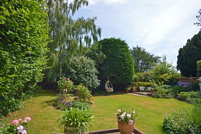 Garden of Clyst St. George, Exeter EX3