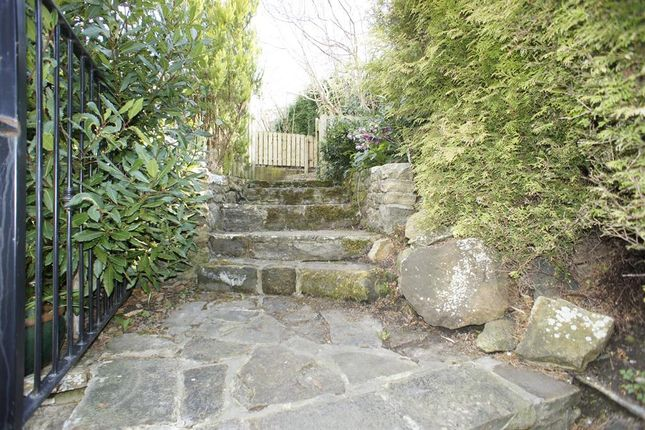 Steps To Tiered Garden