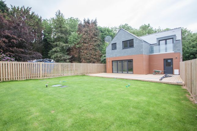 Thumbnail Detached house for sale in Blackeven Hill, Roborough, Plymouth