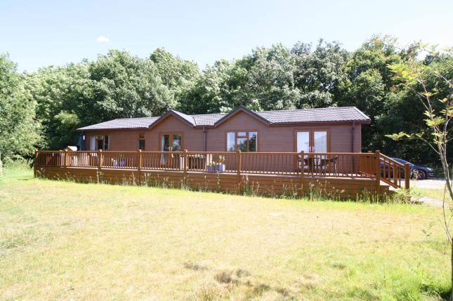 Thumbnail Bungalow for sale in Woodham Walter, Maldon, Essex
