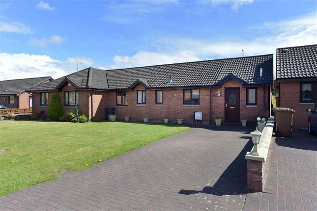 Thumbnail Property for sale in Cairn Avenue, Renfrew