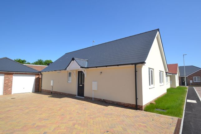 Thumbnail Detached bungalow for sale in Springfield Meadows, Little Clacton, Clacton-On-Sea
