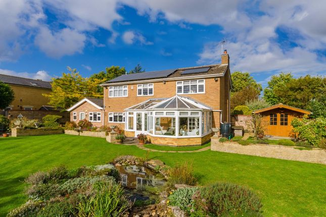 Thumbnail Detached house for sale in Empingham Road, Stamford