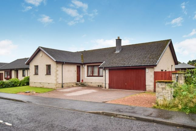 Thumbnail Detached bungalow for sale in Coldstream Avenue, Perth