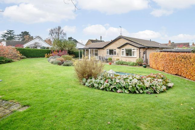 Thumbnail Detached bungalow for sale in Manor Road, Pitsford, Northampton