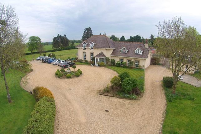 Thumbnail Detached house for sale in Dorchester Road, Sturminster Marshall, Wimborne