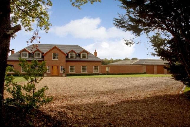 Thumbnail Detached house to rent in Chobham Park Drive, Chobham, Woking
