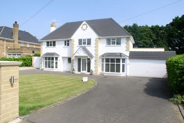 Thumbnail Detached house to rent in Silverdale Avenue, Walton-On-Thames