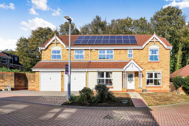 Thumbnail Detached house for sale in Beech Grove, Hessle