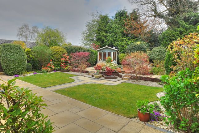 Thumbnail Detached bungalow for sale in Hammond Way, Sprowston, Norwich