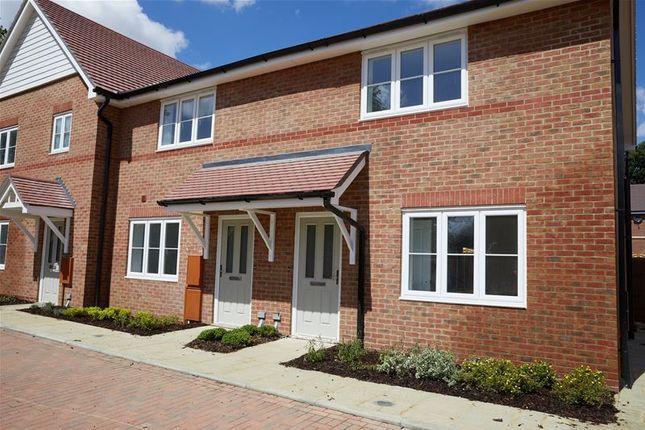 Thumbnail Semi-detached house for sale in Appledown Grange, Marden Kent