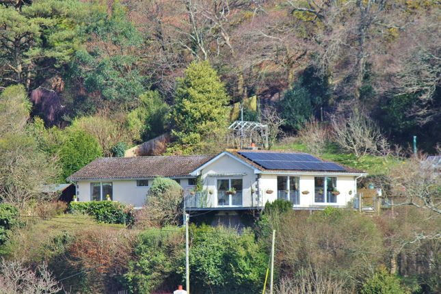 Thumbnail Detached bungalow for sale in Greendown, Lower Rocombe Road, Uplyme