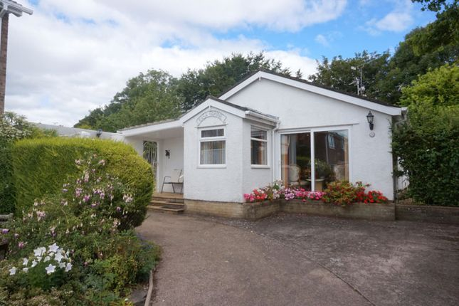Thumbnail Detached bungalow for sale in Winsford Road, Sully