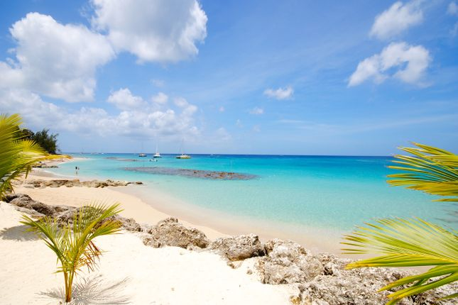 Stunning Beach of Art Studio Apartment 12, Holetown, St. James, Barbados