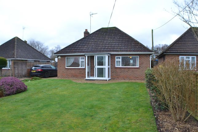 Thumbnail Bungalow to rent in The Street, Bramley, Tadley