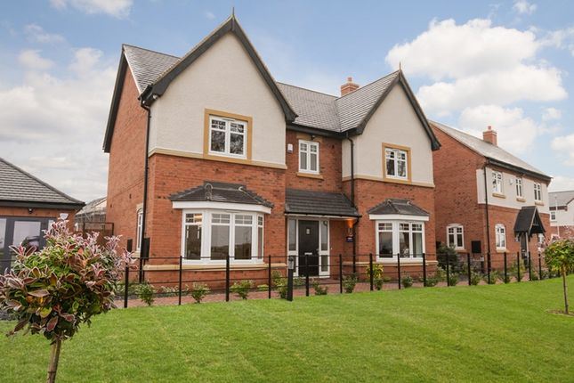 Thumbnail Detached house for sale in Aston At Hackwood Park, Starflower Way, Derby
