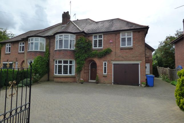 Thumbnail Semi-detached house to rent in Molescroft Road, Beverley